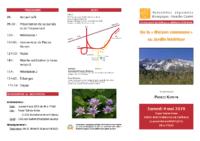 Montferrand 2019